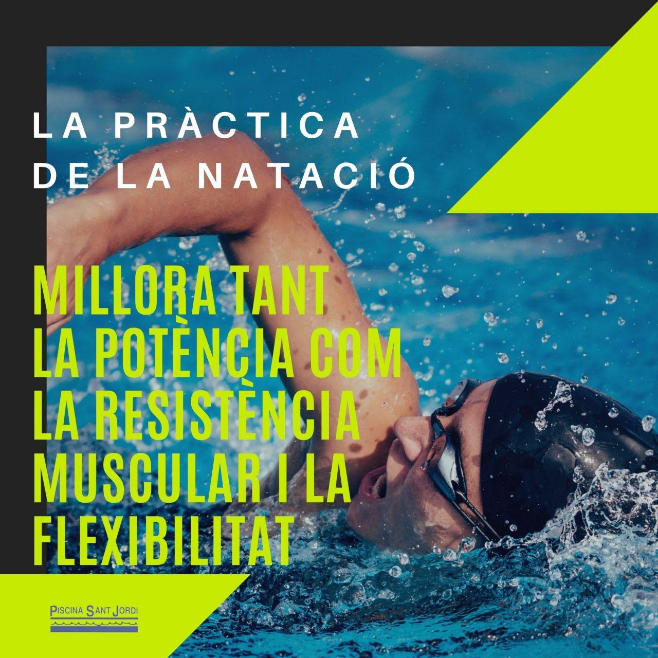 LA-PRÀCTICA-DE-LA-NATACIÓ-1280x1280.jpg